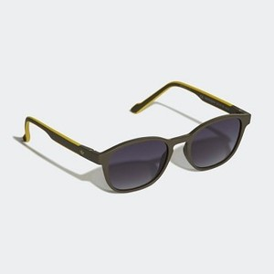 Originals AOR030 Sunglasses [아디다스 선글래스] Legend Ivy/Legend Ivy/Bold Gold (CM1395)